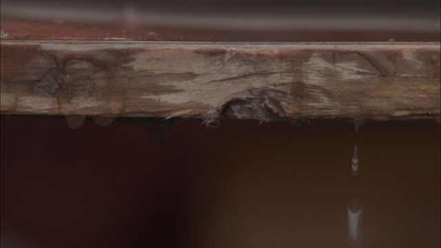 vidéos et rushes de water drips from wooden plank, badrinath, india available in hd. - terrasse