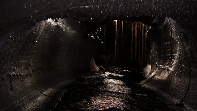 water drips in a cave in hawaii's fern forest. - wet stock videos & royalty-free footage