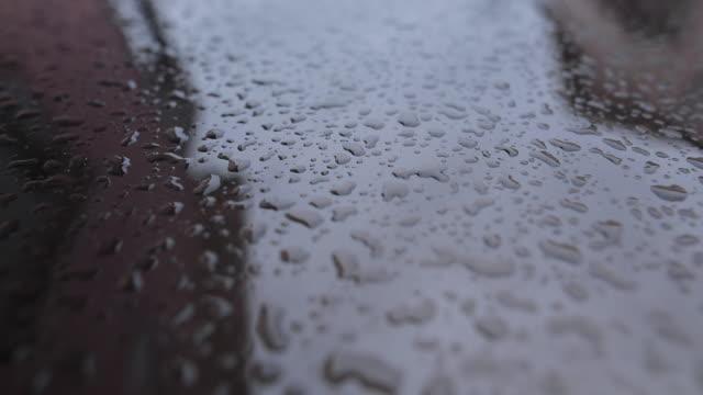 stockvideo's en b-roll-footage met waterdruppels verzamelen bovenop metalen auto oppervlak - motorkap