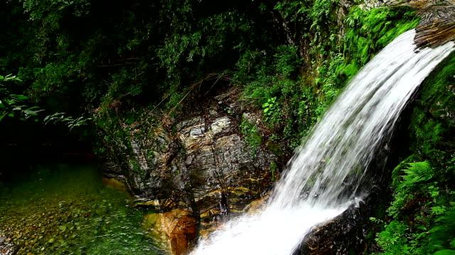 ウォーターフォール - waterfall点の映像素材/bロール