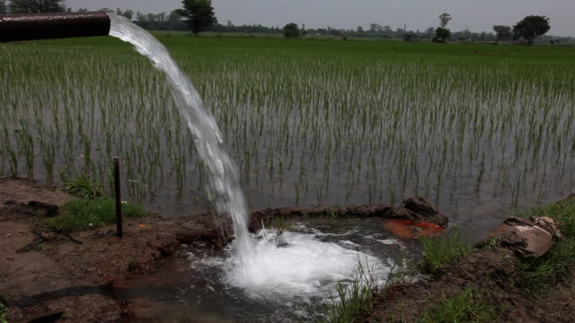 water falling from tubewell in the farms  - irrigation equipment stock videos & royalty-free footage