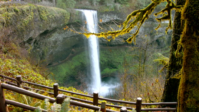 water falls - oregon us state stock videos & royalty-free footage