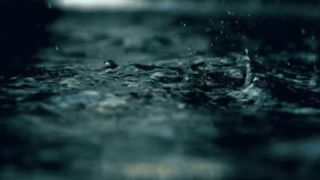 stockvideo's en b-roll-footage met water fern river - seattle