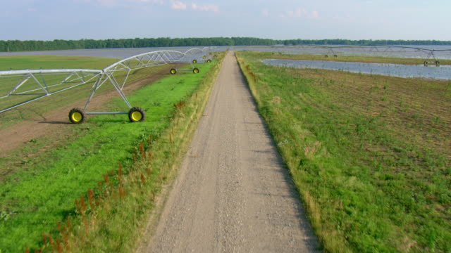 water floods farm fields on both sides of a dirt road. - irrigation equipment stock videos & royalty-free footage