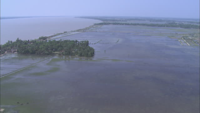 Water floods the rice paddies in Dhaka Bangladesh. Available in HD.