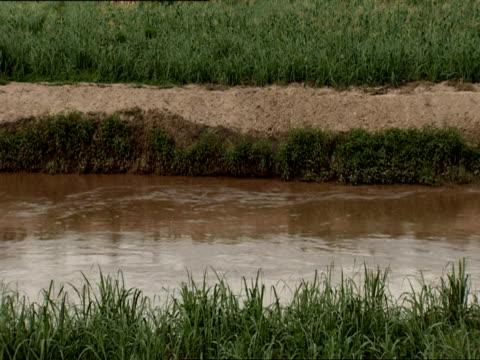 ms water flowing down ruganwa river / kigali, rwanda - キガリ点の映像素材/bロール