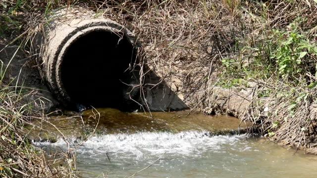 排水管から流れる水に囲まれています。 - 排水口点の映像素材/bロール