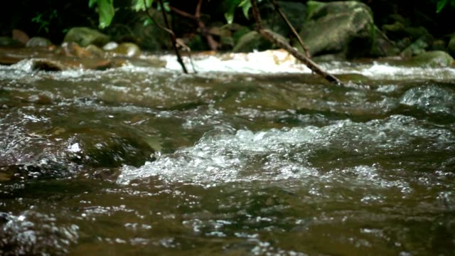 Water flowing in streams slow motion.
