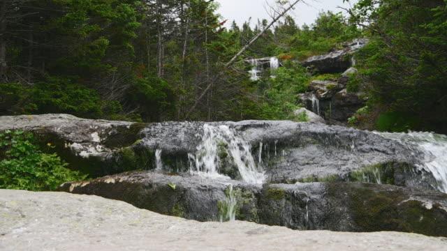 stockvideo's en b-roll-footage met water dat van rotsen stroomt - steen rots