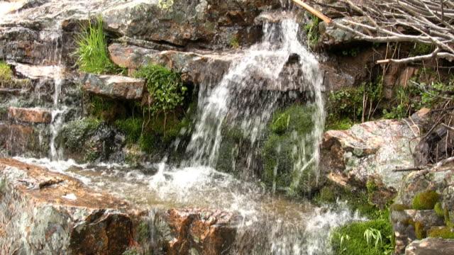 """vidéos et rushes de """"eau qui coule sur les rochers et de mousse"""" - eau vive"""