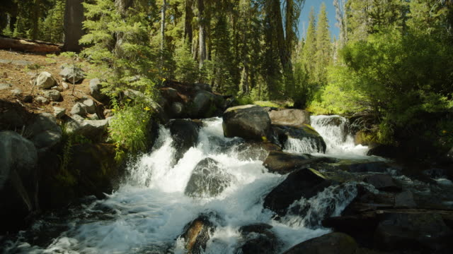 water flowing over rocks in lassen volcanic national park - northern california stock videos & royalty-free footage