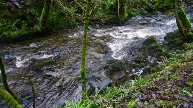 water flowing over rocks-water of gregg near barr - david johnson stock videos & royalty-free footage