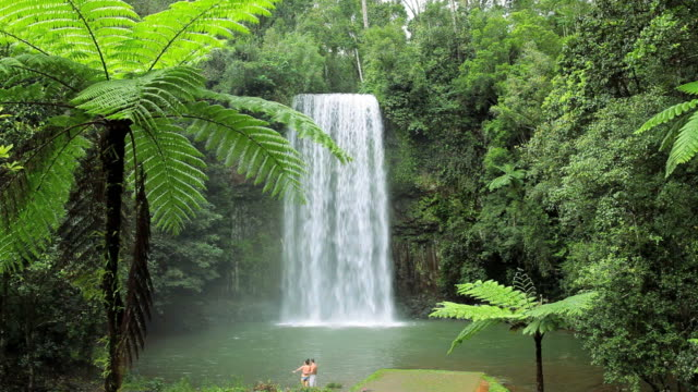 water flowing over the millaa millaa falls, atherton tablelands nr cairns, queensland, australia, southern hemisphere - southern hemisphere stock videos & royalty-free footage