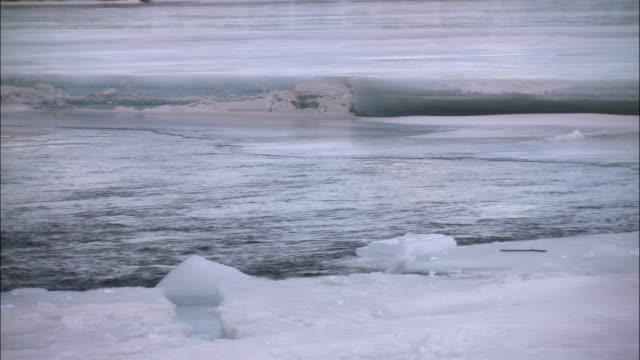 water flows between sheets of ice on tagish lake. - whitehorse stock videos and b-roll footage