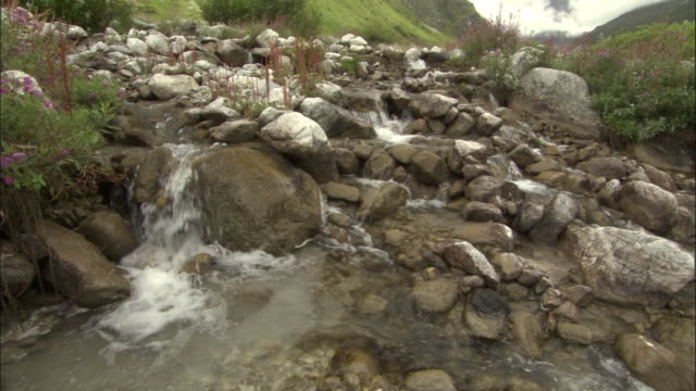 Water flows over boulders, Valley of Flowers, Himalayas Available in HD.