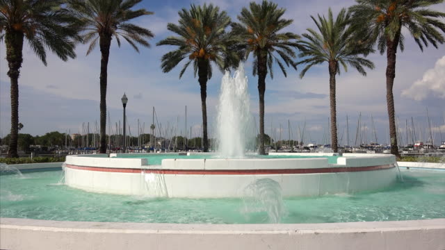 A water fountain in front of palm trees in St Petersburg, Florida
