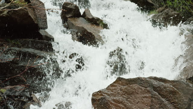 vídeos de stock e filmes b-roll de water from a mountain stream falls over rocks and boulders in slow motion - território selvagem