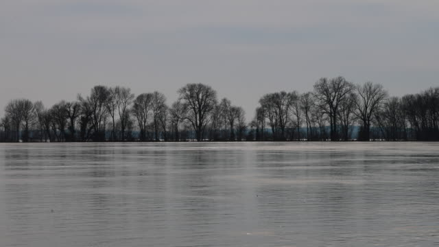 Water from recent rains swells the Ohio River to near flood stage as it flows past Saturday February 16 2019 in Newburgh Indiana