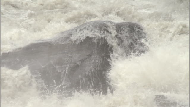 vidéos et rushes de water gushes towards camera, gangotri, india available in hd. - roc