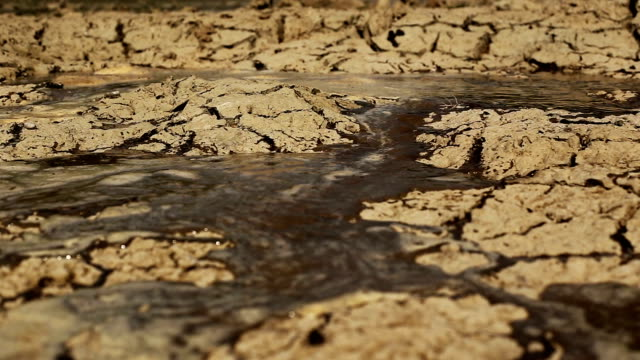 Water In Cracked Land