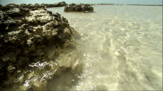 Water in Shark Bay ripples over stromatolites. Available in HD.