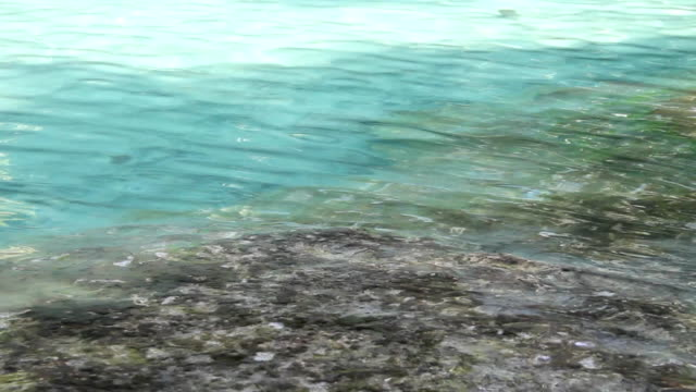 Water in The emerald pool (Sra Morakot), Krabi, Thailand.