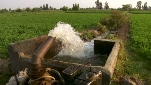 a water irrigation system pumps water into fields in the nile delta. - vattenpump bildbanksvideor och videomaterial från bakom kulisserna