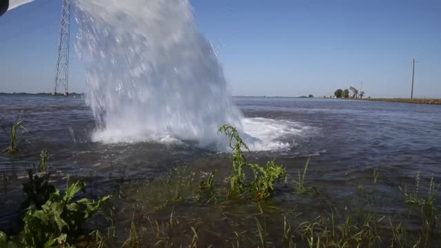 Water is pumped into a field that will be planted with rice on May 8 2015 in Biggs California As California enters its fourth year of severe drought...