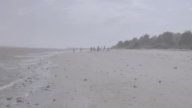 tu water lapping shore of beach with trees and people in the distance on overcast day / wilmington, north carolina, united states - carolina beach stock videos & royalty-free footage