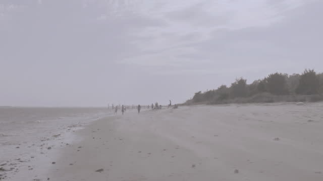tu water lapping the shore of an empty beach with trees in the background on an overcast day / wilmington, north carolina, united states - carolina beach stock videos and b-roll footage