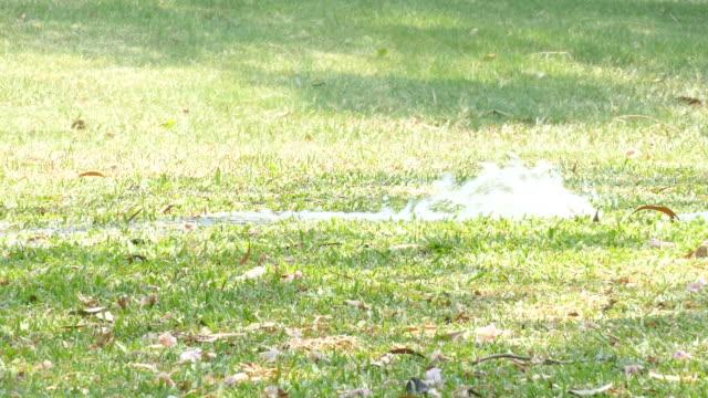 water leaking on yard