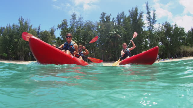 water level shot of four kayakers paddling out from shore - turtle bay hawaii stock videos and b-roll footage