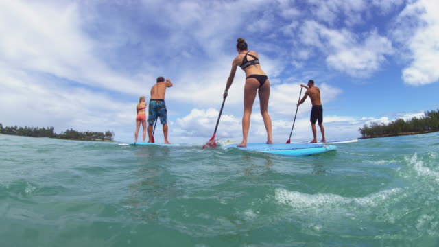 stockvideo's en b-roll-footage met water level shot of four paddle boarders paddling away - oahu