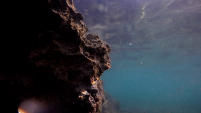 water masses reflected by underwater cliffs, porous rocky shore and small caves. water surface from the seabottom. turquoise water and the rays of the sun. - porous stock videos & royalty-free footage