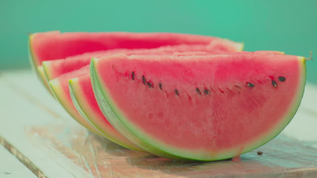 water melon - picnic stock videos and b-roll footage