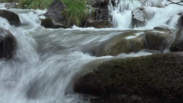 water moviment in the river in Forest of Valgrande