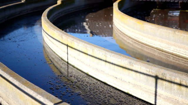 Water moving slowly through a treatment plant