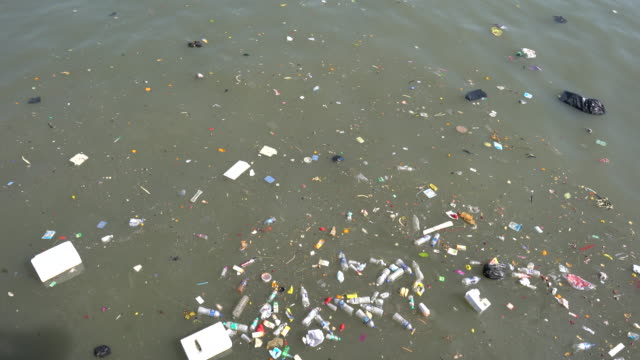 water pollution - pollution stock videos & royalty-free footage