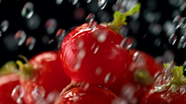 slo mo ld water pouring over radishes - medium group of objects stock videos & royalty-free footage