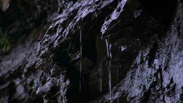 vidéos et rushes de water pours down cliff face, cornwall, uk - érodé