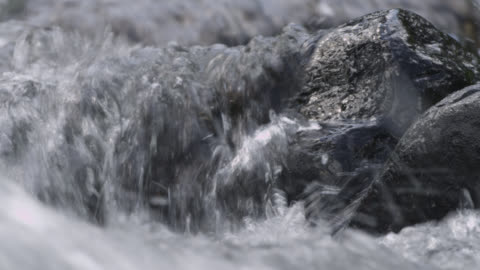 water pours over rocks in stream, wyoming, usa - flowing water stock videos & royalty-free footage