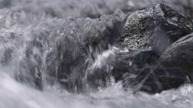 vidéos et rushes de water pours over rocks in stream, wyoming, usa - roc