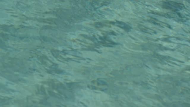 vídeos y material grabado en eventos de stock de water ripples - psicodélico
