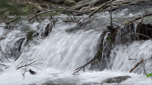 water running down stream through fallen branches - american fork city stock videos & royalty-free footage