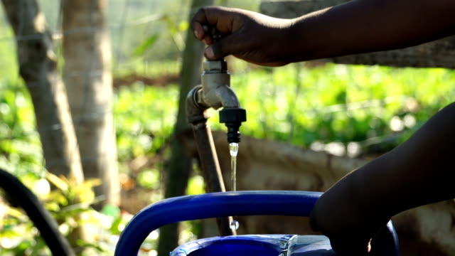 stockvideo's en b-roll-footage met ms water running from tap filling watering can on farm, kwazulu natal, south africa - emmer