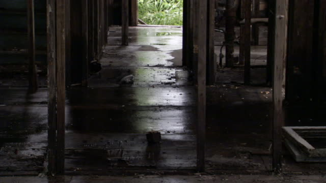 water soaks the floor of a gutted out building damaged by hurricane katrina floods. - hurricane katrina stock videos and b-roll footage