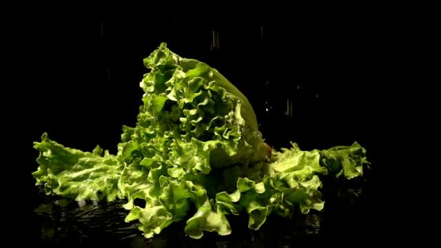 Water Splash On Lettuce