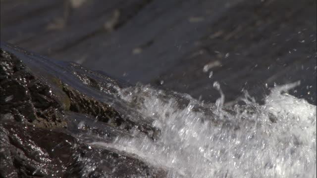 Water splashes over rocks towards camera, Kedarnath, India Available in HD.