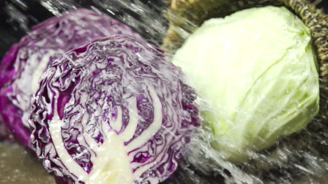 Water Splashes Red and White cabbage : HD Slow motion