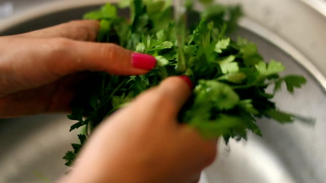 water splashing onto parsley - parsley stock videos and b-roll footage